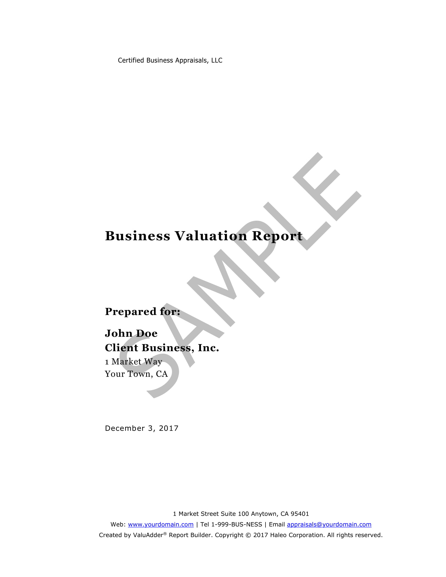 business valuation report example 01