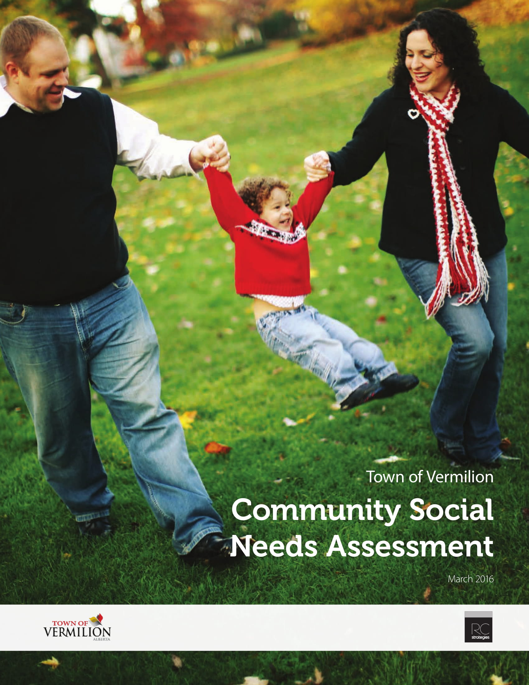 community social needs assessment example 01