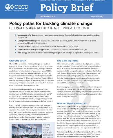 14 Policy Brief Templates And Examples Pdf Doc Examples