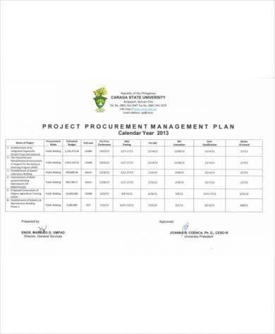 comprehensive project procurement management plan example1