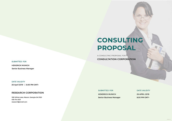 9 consulting proposal examples pdf doc ai psd