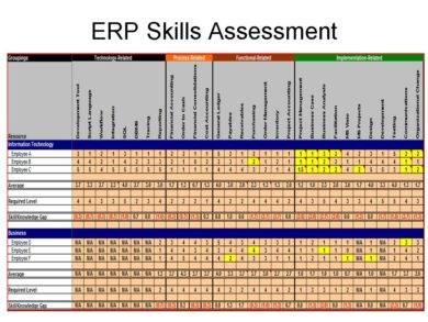 erp skills assessment example1