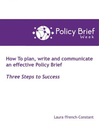 effective policy brief example1
