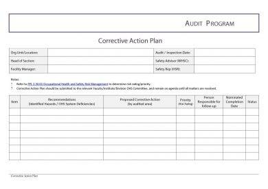 employee audit corrective action plan example2