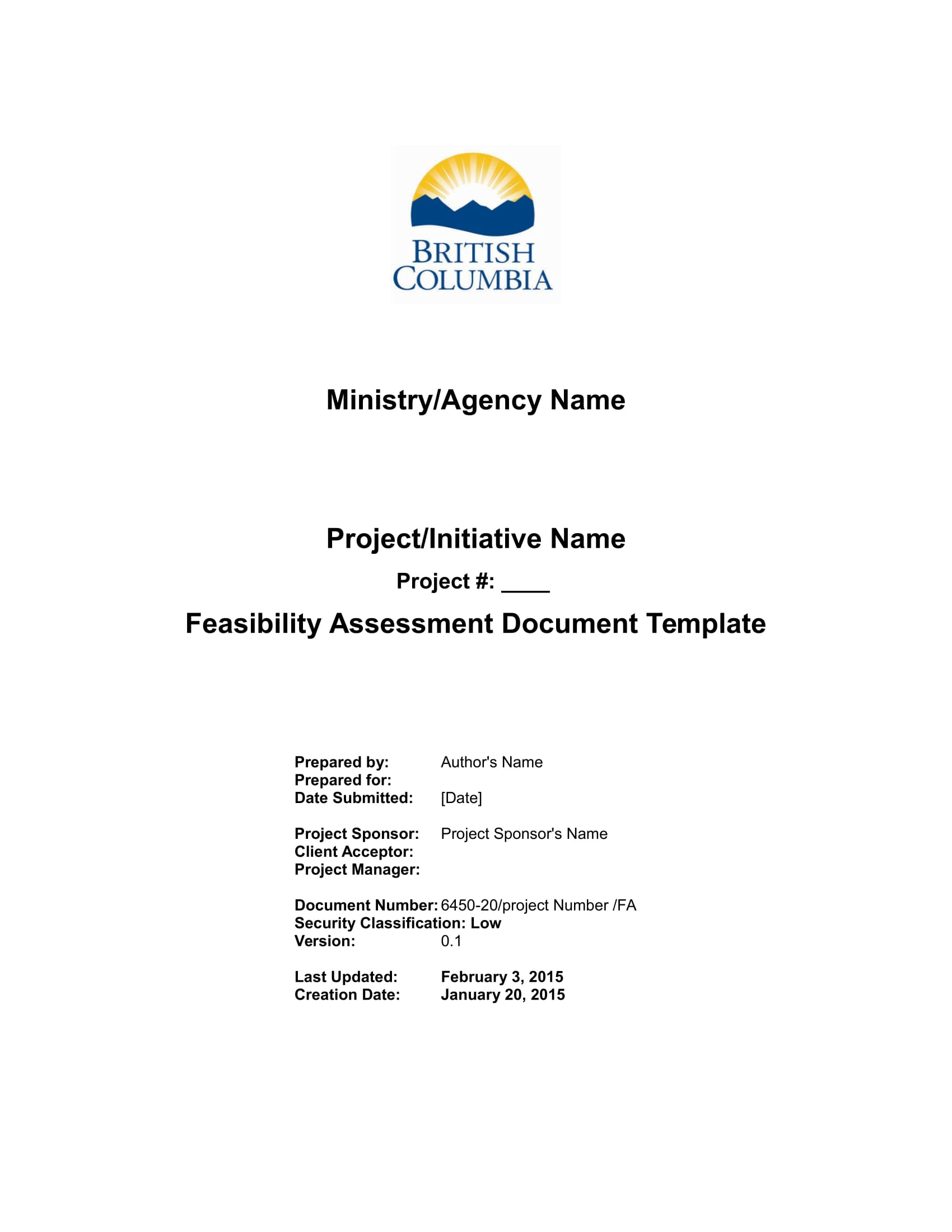 feasibility assessment example 01
