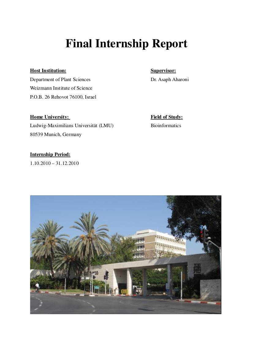 final internship report example