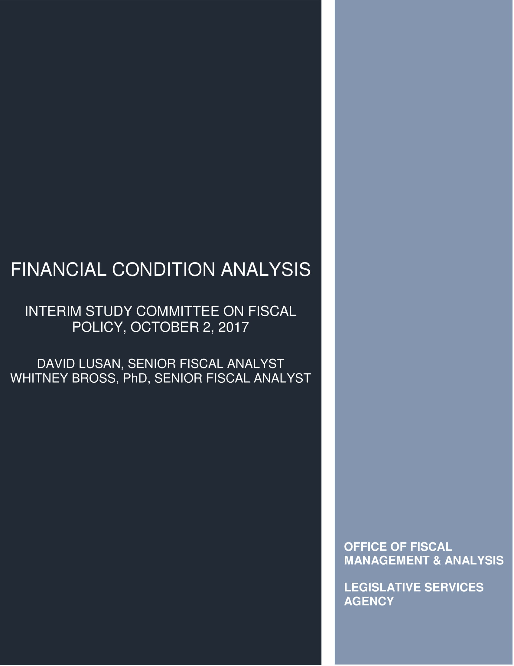 financial condition and health analysis example