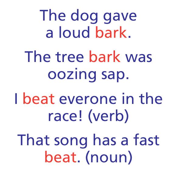 homograph in sentence examples