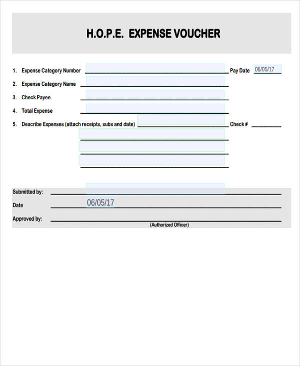 9+ Expense Voucher Examples