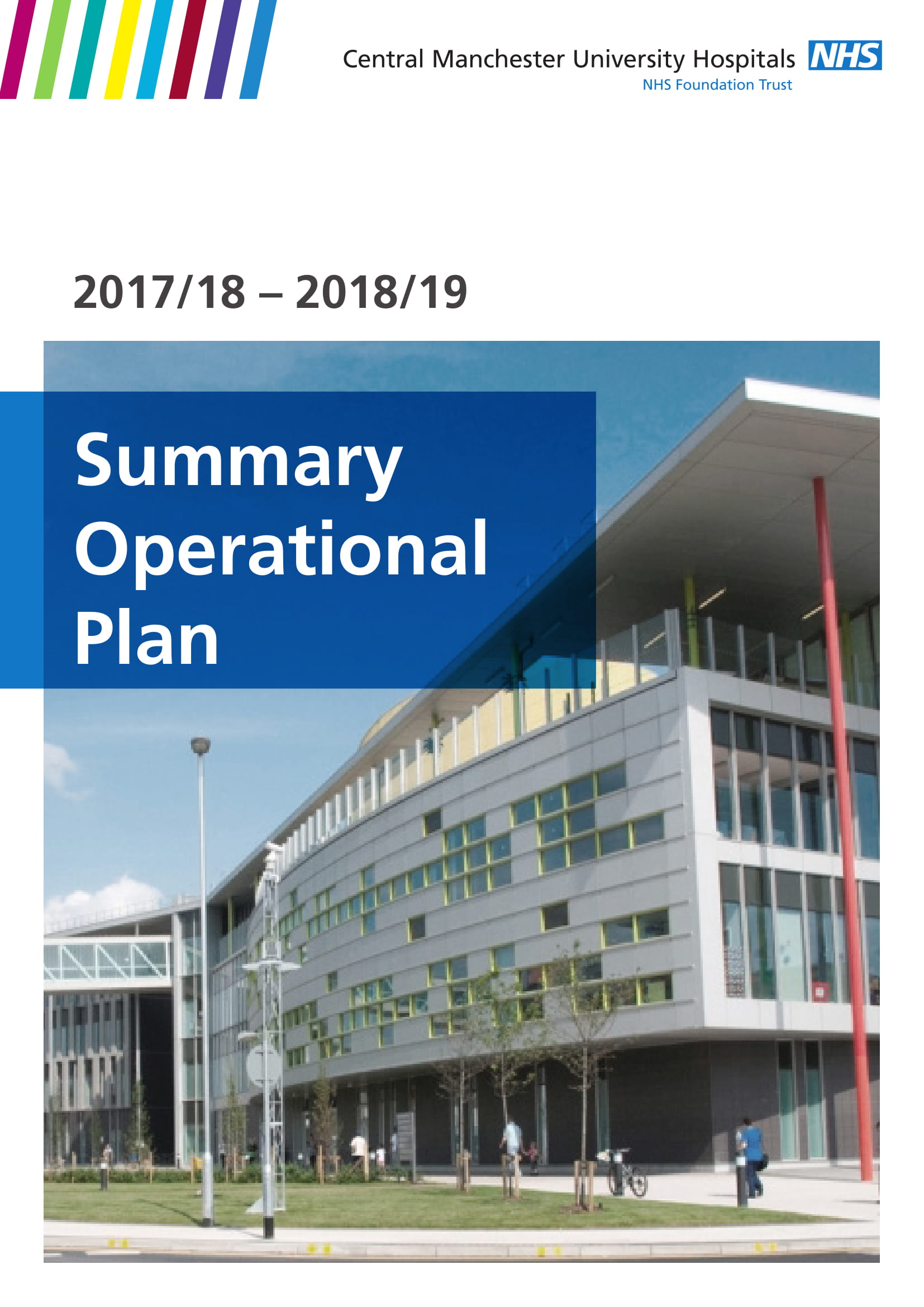 hospital operational plan summary example 01