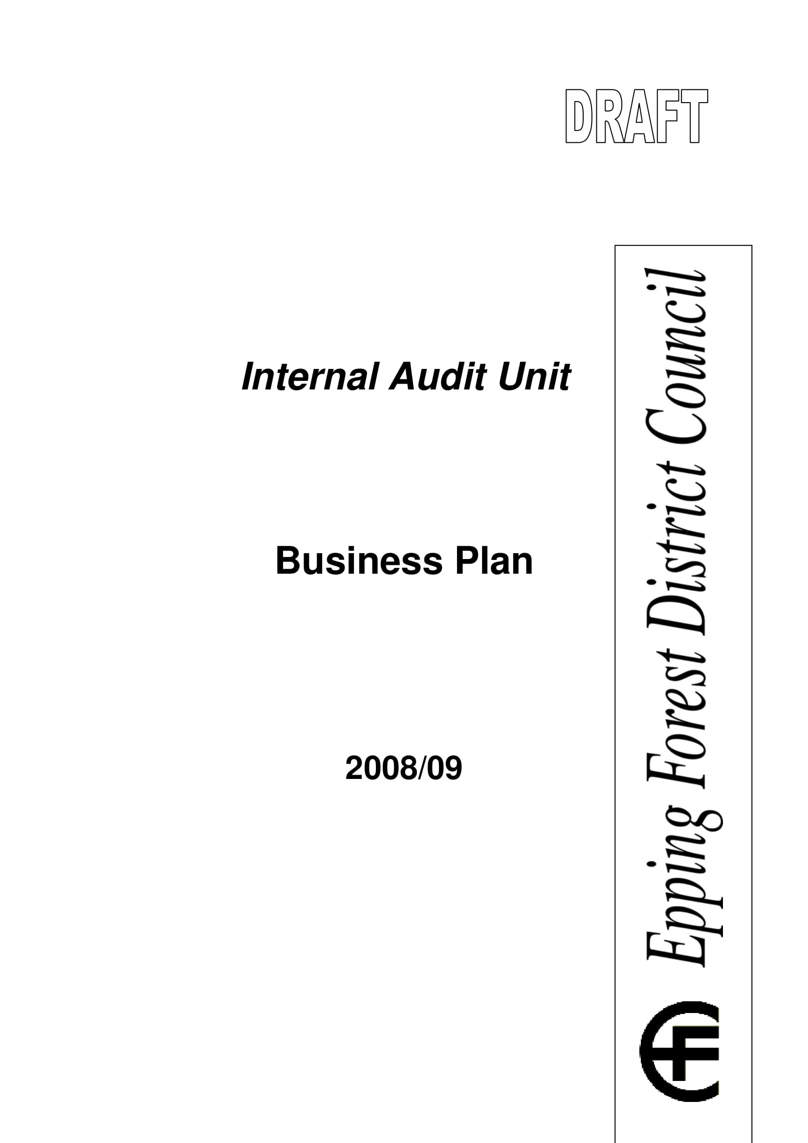 internal audit business plan and swot analysis example