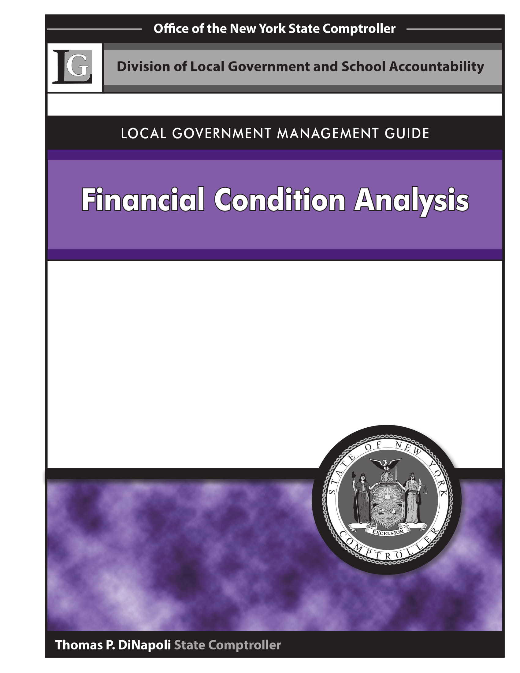 local government financial health analysis example