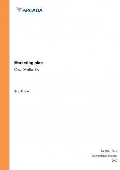 marketing plan with market audit and swot analysis example