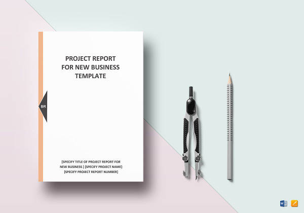 new business project report example