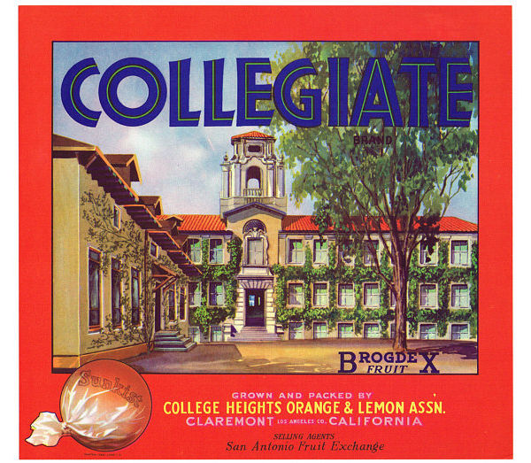 original vintage university label example1