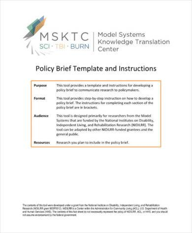 Policy Brief Template And Instructions Example