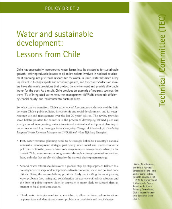 policy brief for water and sustainable development example