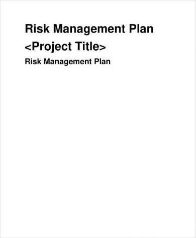 risk management plan template example1