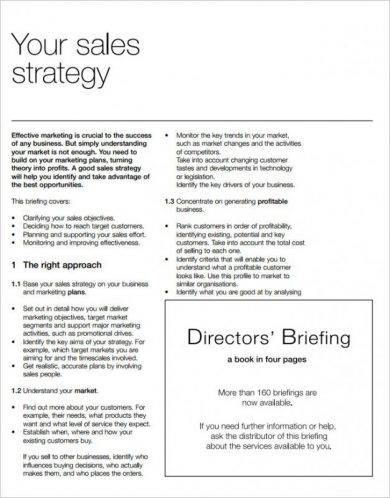 sales strategy action plan example1