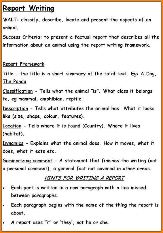 sample report writing