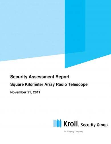 security assessment report example