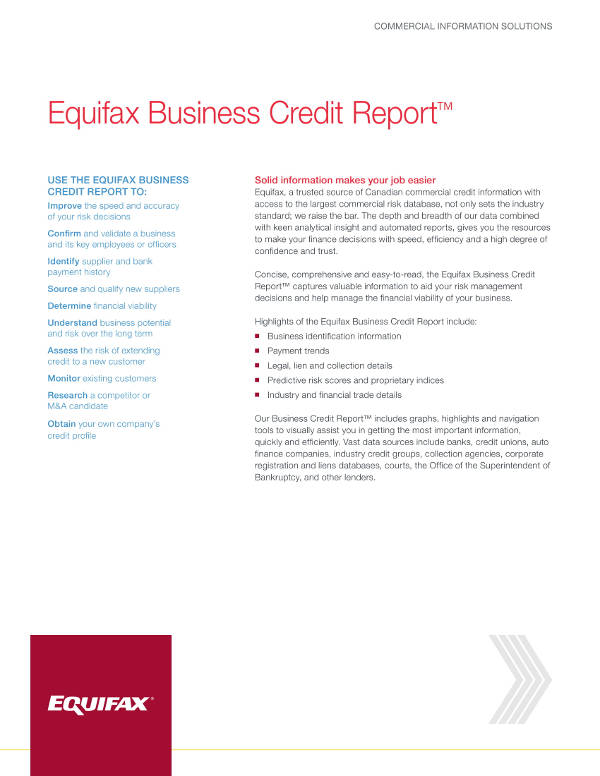 simple business credit report example1