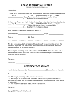 termination of lease agreement example2