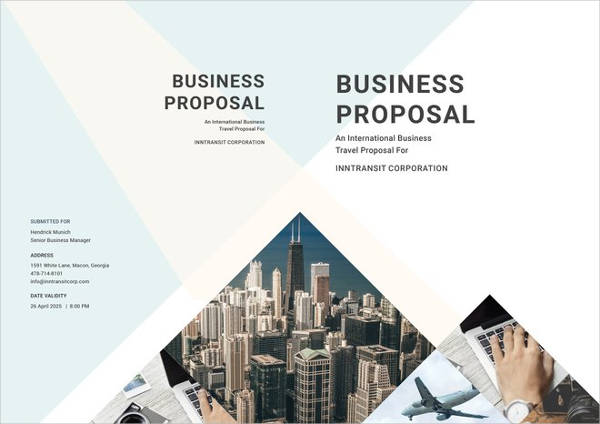travel business proposal example