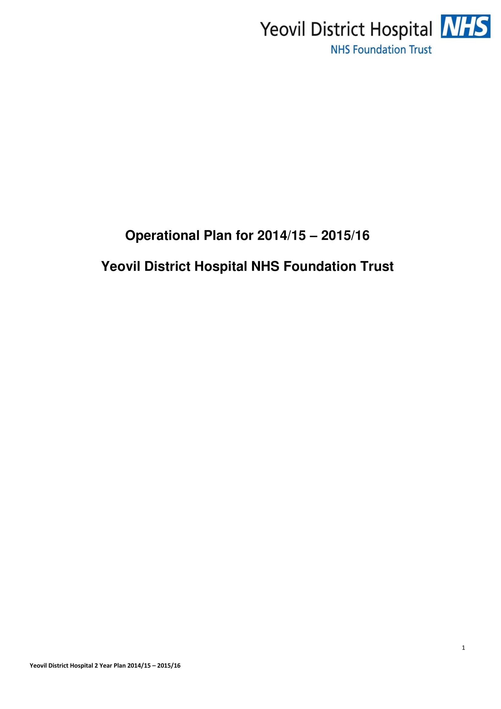 two year hospital operational plan example 01