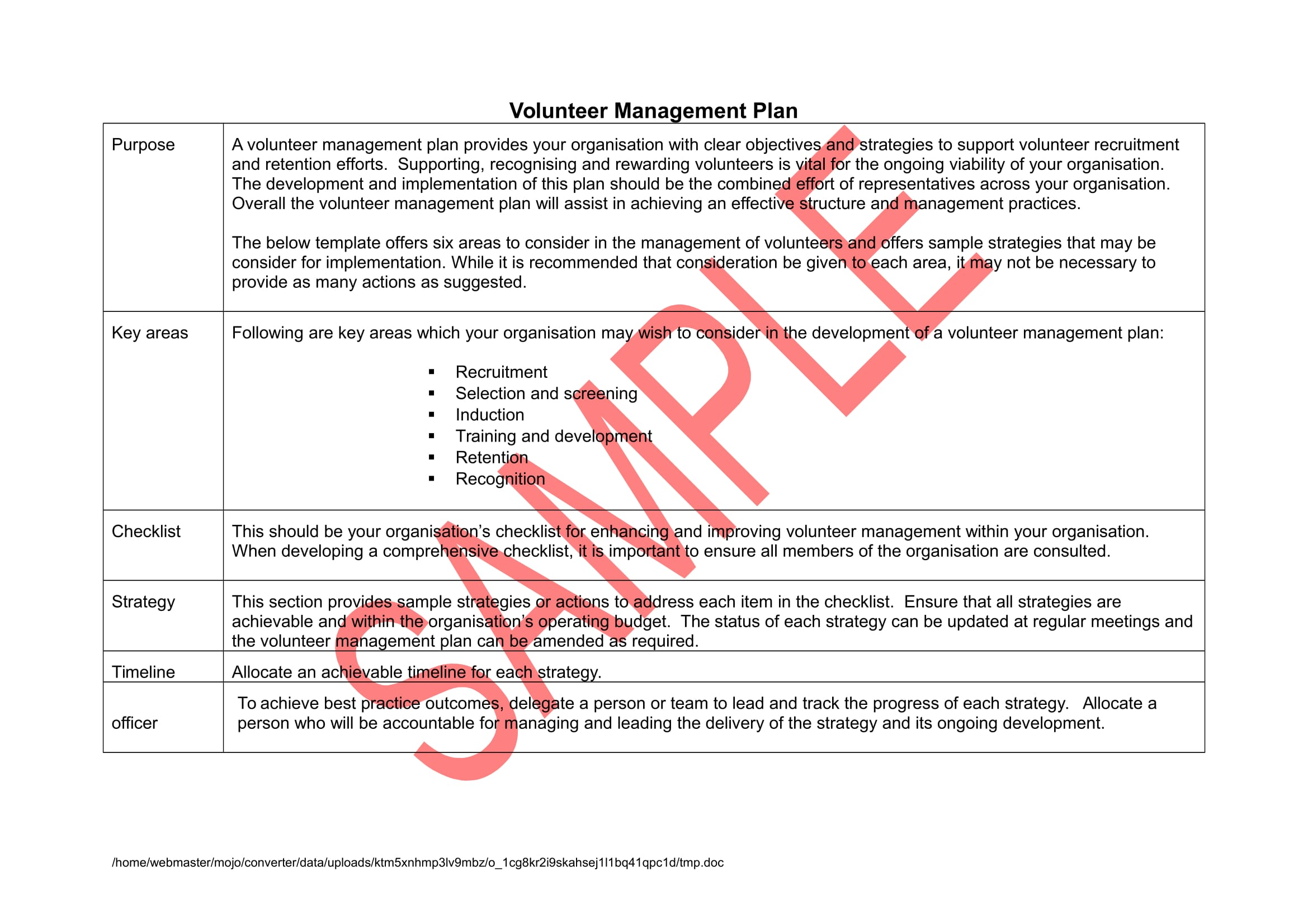 volunteer management action plan example 1