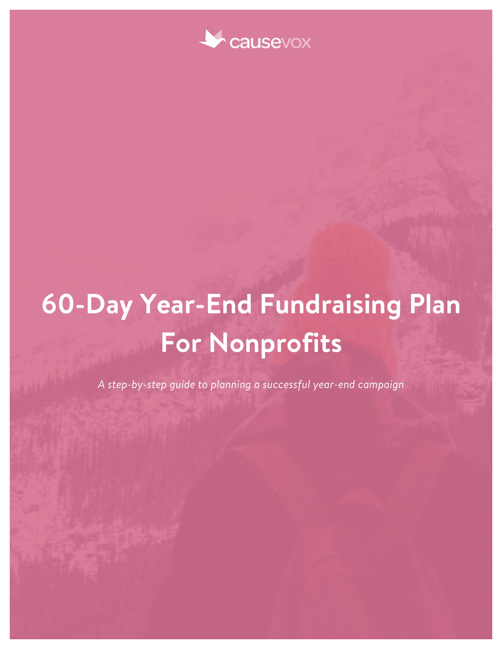 60 day year end fundraising plan for non profits example 01