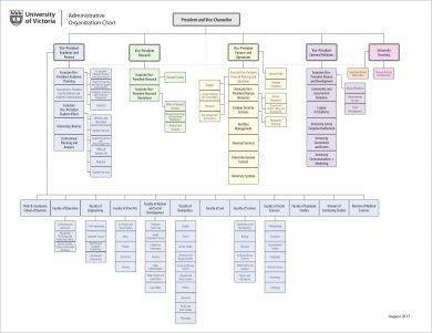 administrative organizational flow chart template example1
