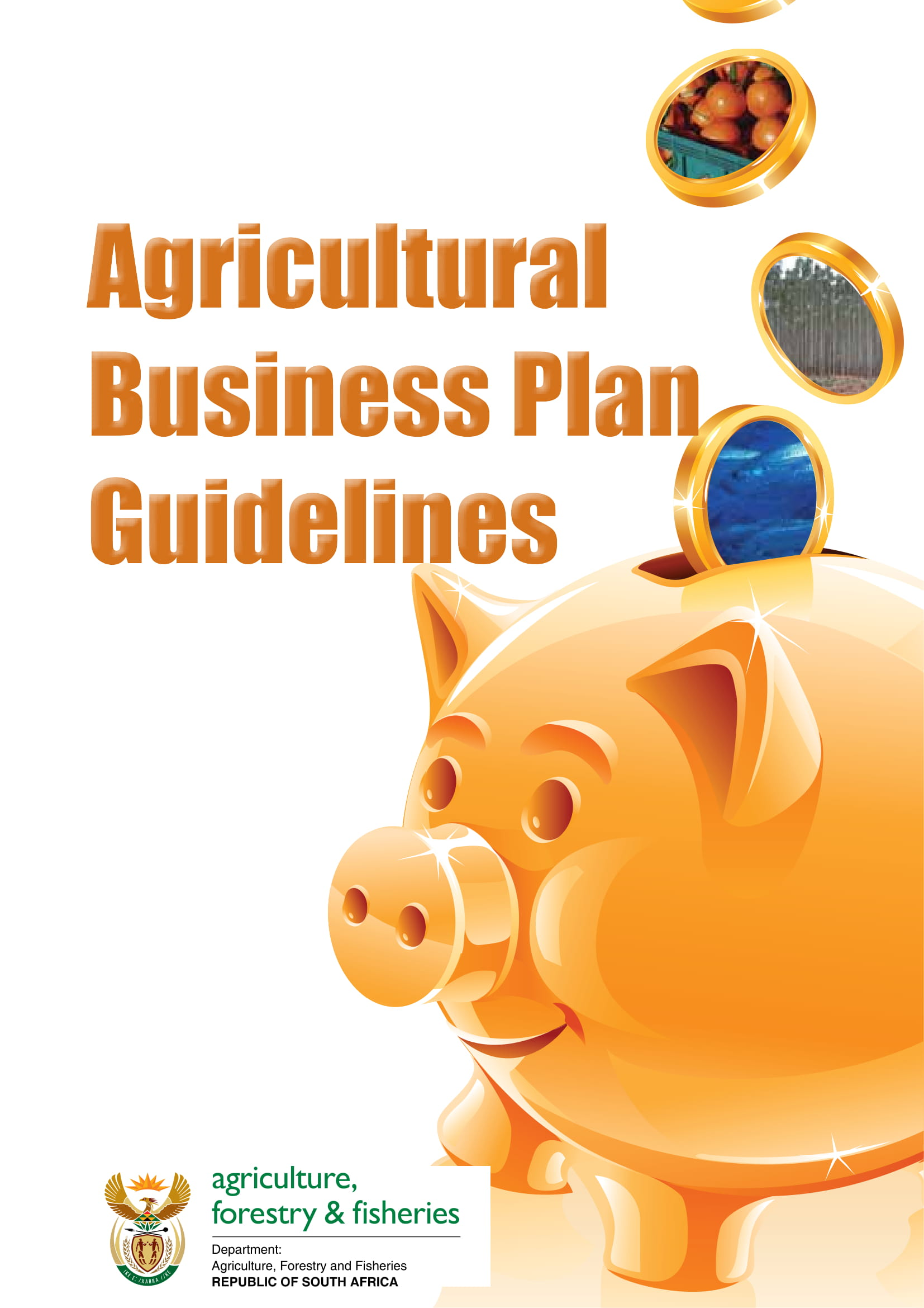 agricultural business plan guidelines example 01