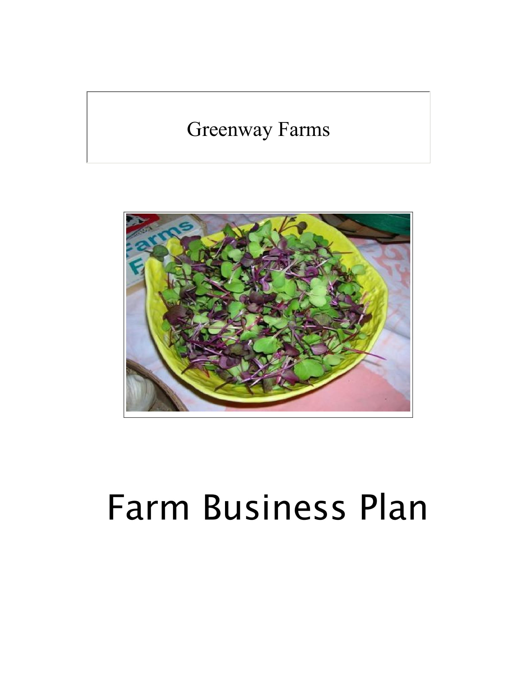 agricultural farm business plan example 01