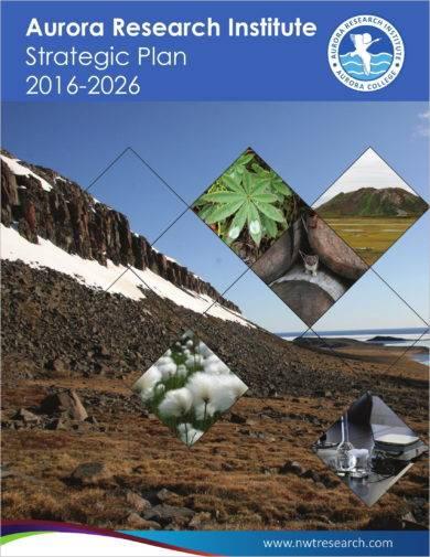 aurora research institute research strategic plan example1