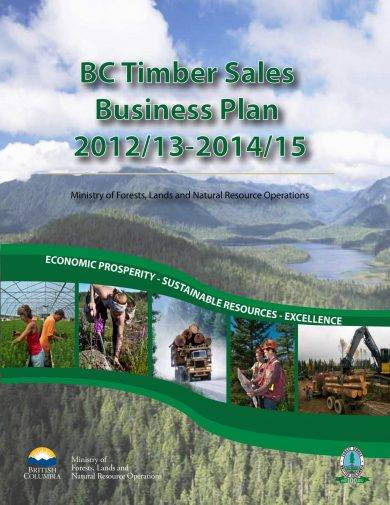 bc timber sales strategic plan example1