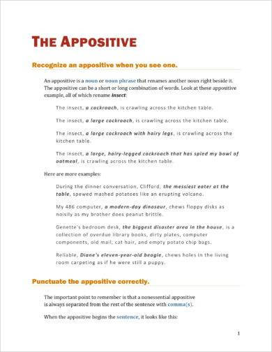 basic appositive example