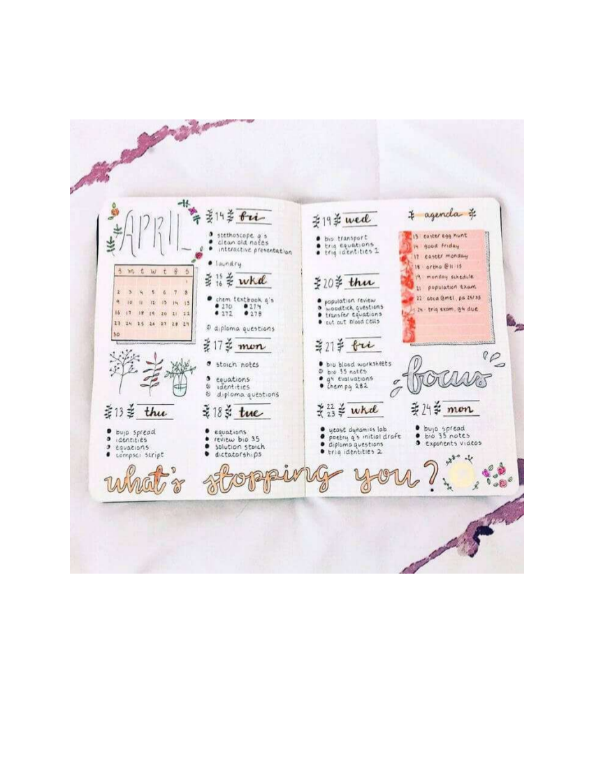 bullet journal spread example