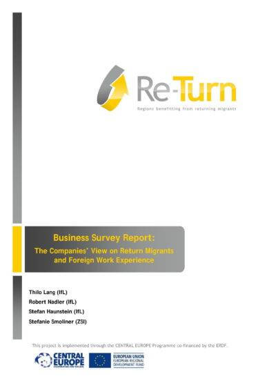 business survey report example
