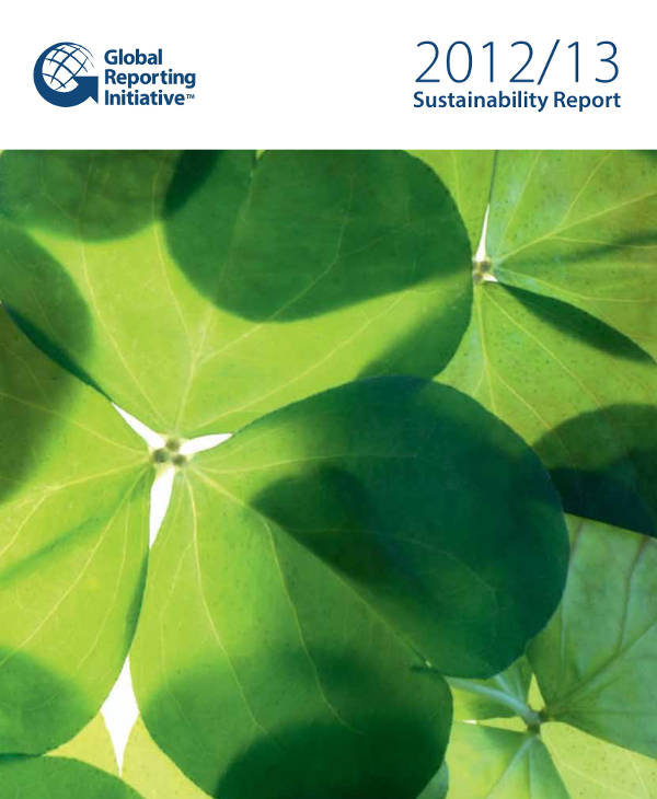 business sustainability report example