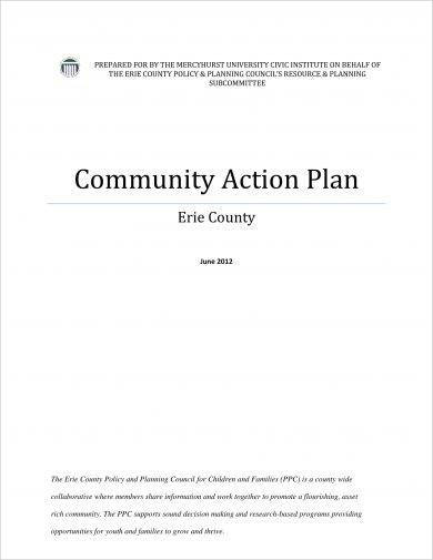community action plan example