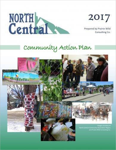 comprehensive community action plan example