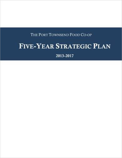 detailed five year strategic plan example