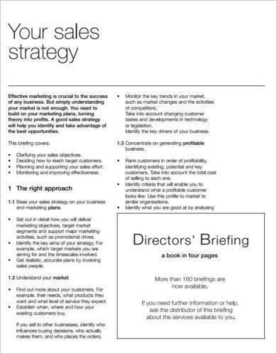 directors briefing sales plan example1