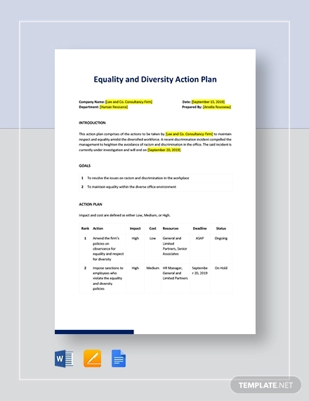 diversity action plan template