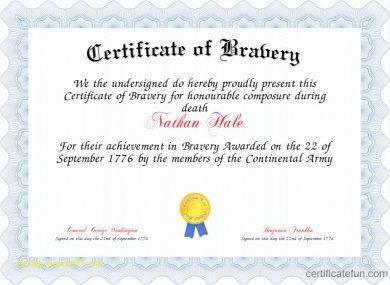 9 bravery award certificate examples pdf elegant bravery award certificate example yadclub Choice Image