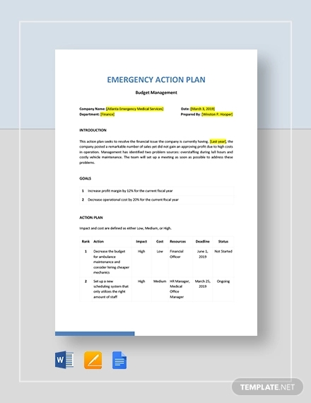 11 Printable Emergency Action Plan Examples Pdf Docs