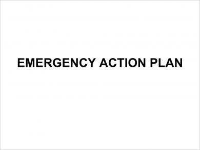 employee emergency action plan example1