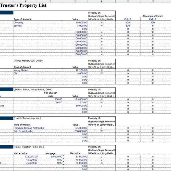 estate planning inventory spreadsheet