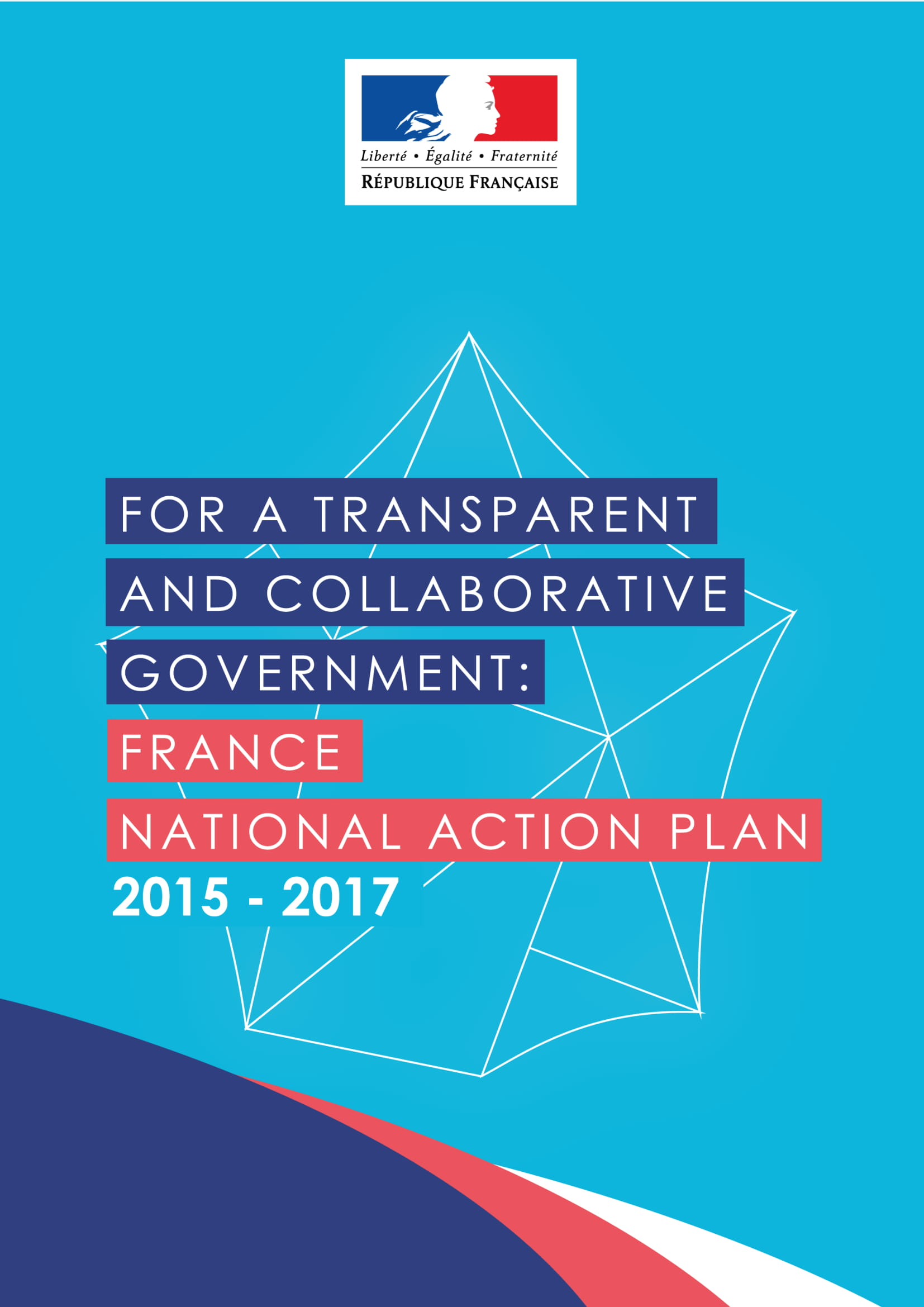 france national action plan example